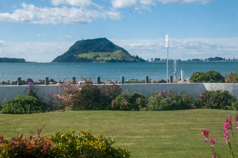 Otumoetai New Zealand  city pictures gallery : Open2view ID#377913 Property for sale in Otumoetai, New Zealand
